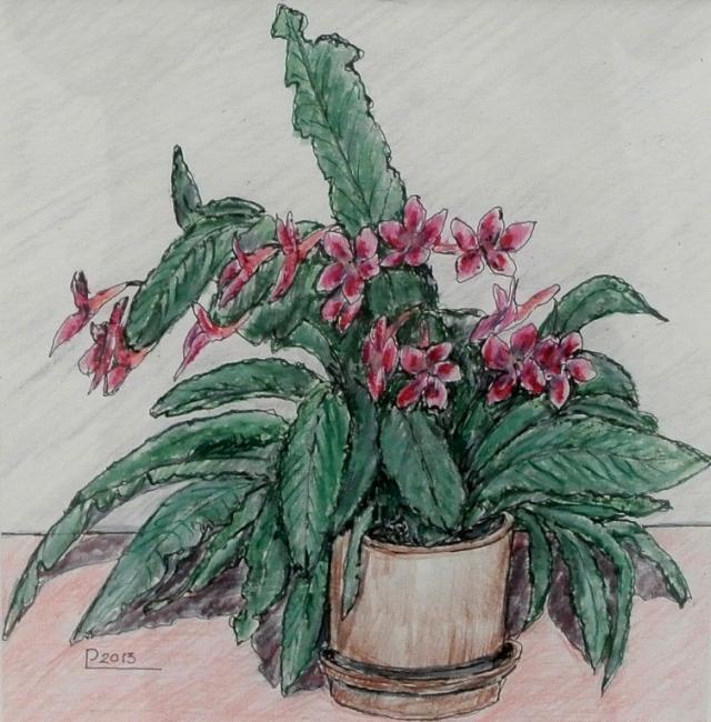 kukka5