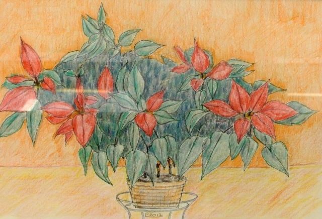 kukka6