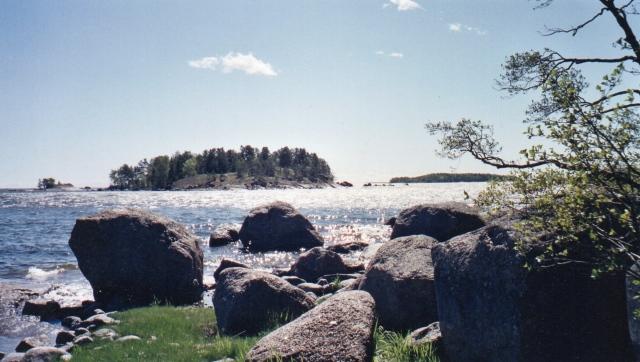 Sammalsaari